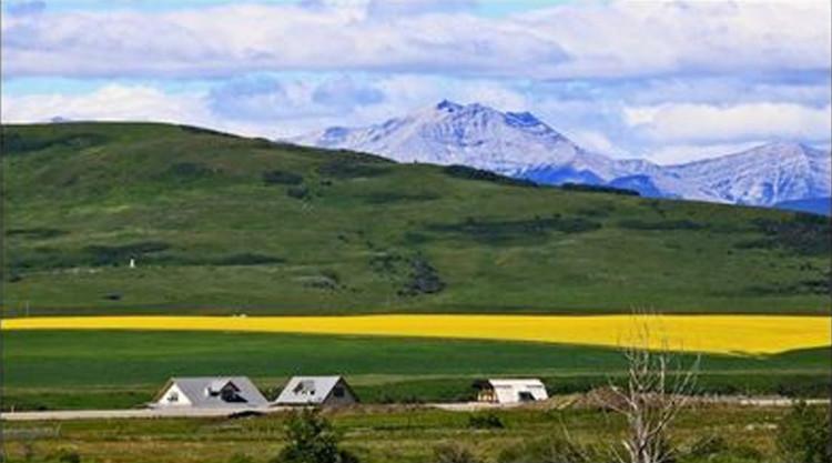 远山的诱惑------加拿大落基山游记(1) - 阳光月光 - 阳光月光